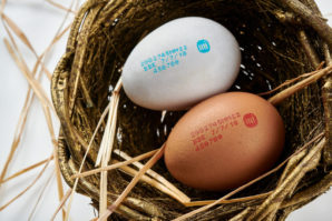 Inkjet printer improves coding-related uptime and traceability in egg market